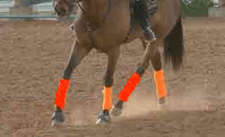 Sharpen Your Eye for Trot Diagonals