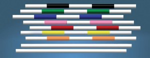 colorful jump poles made of wood or PVC