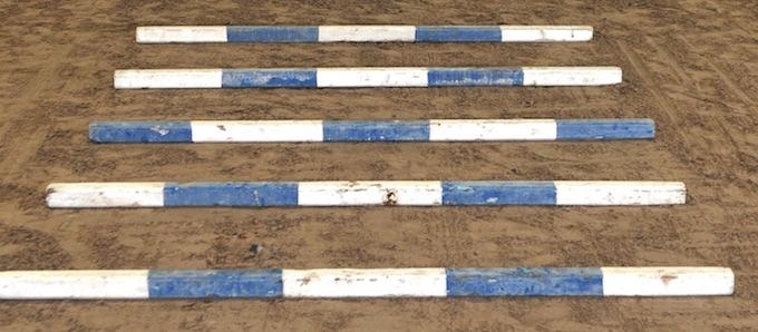 Beginner Trot Poles – Lesson Plan