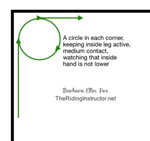 circle in corner for inside corner TheRidingInstructor.net