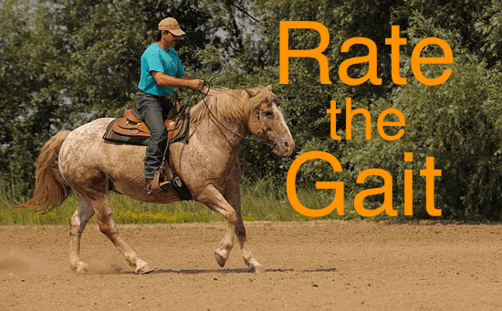 Rate the Gait-A Lesson Plan For Horse Control