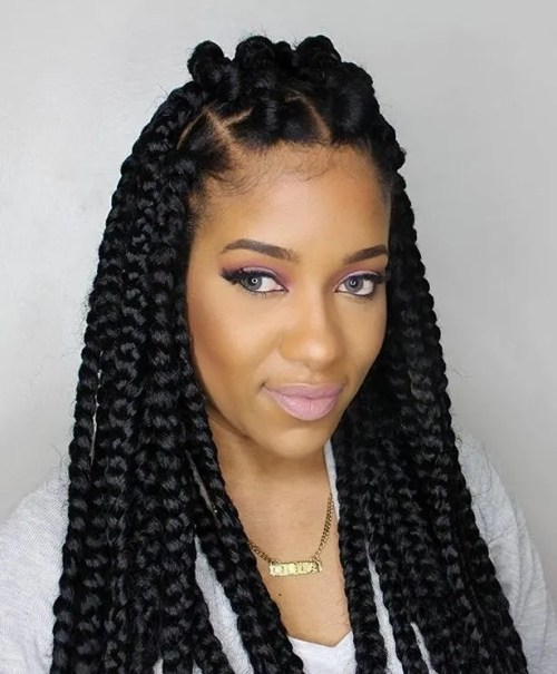 Fantastic 70 Best Black Braided Hairstyles That Turn Heads In 2017 Hairstyle Inspiration Daily Dogsangcom