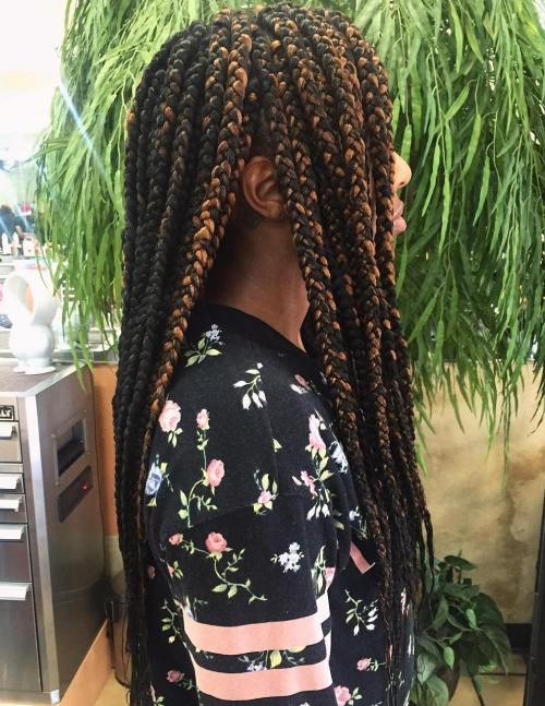 Black And Caramel Box Braids