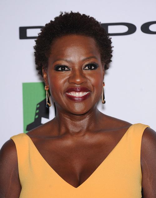 Stupendous 30 Best Natural Hairstyles For African American Women Short Hairstyles Gunalazisus