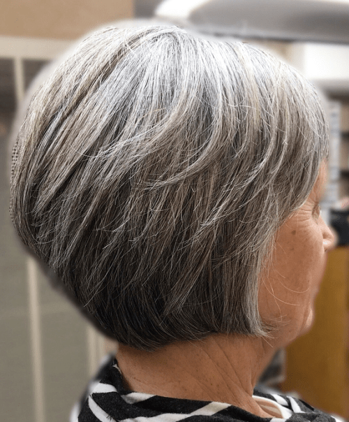 Gray Pixie Bob over 70