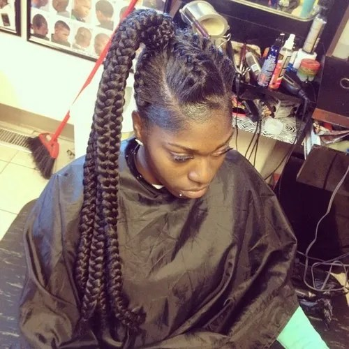 extra long black braided ponytail