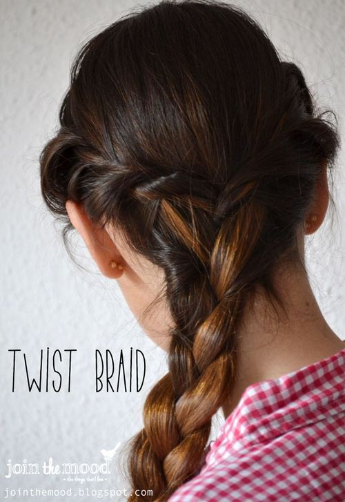 Twist Braid Hairstyle For Long Hair