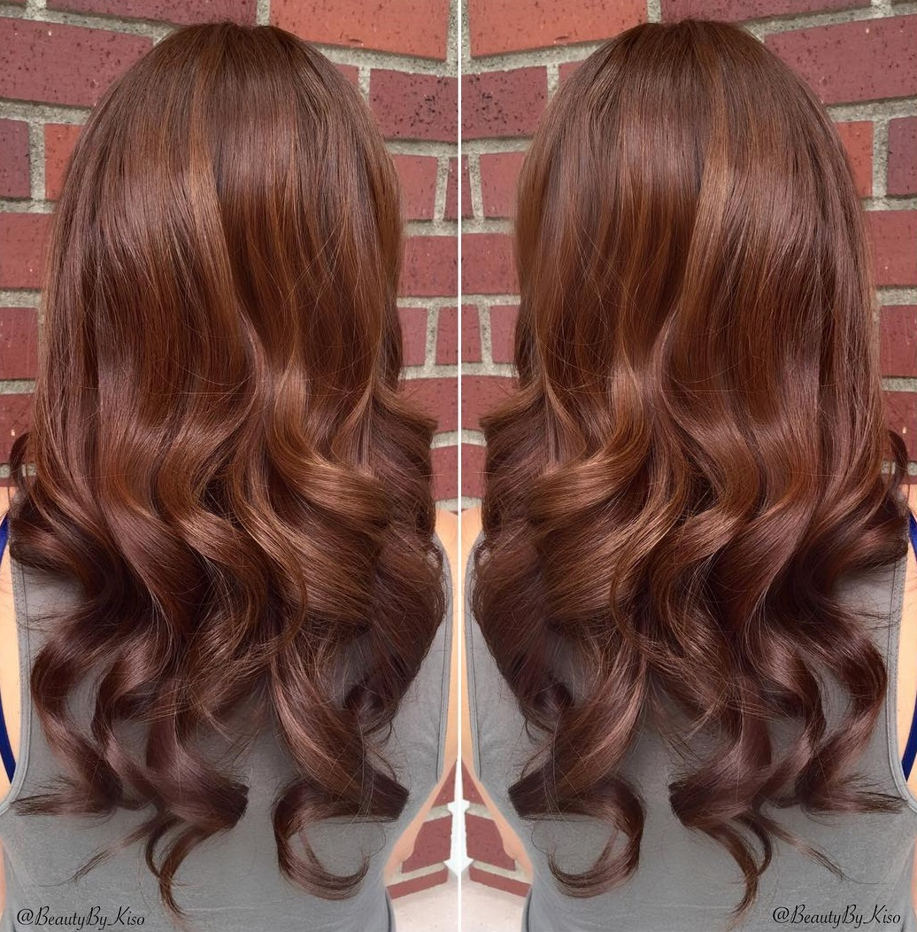 brown color Chestnut hair