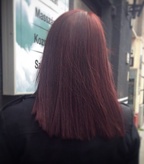 medium blunt cut burgundy hair