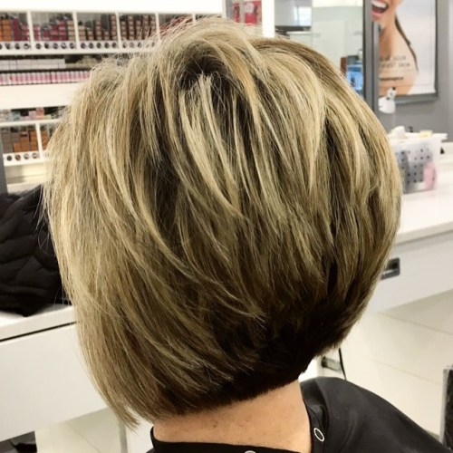feathered two-tone pixie bob