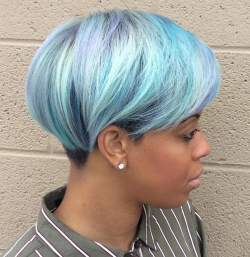 Pastel Blue Pixie Bob