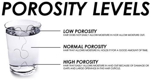 Hair Porosity Levels