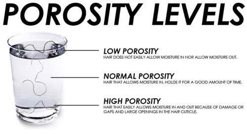 Hair Porosity Levels