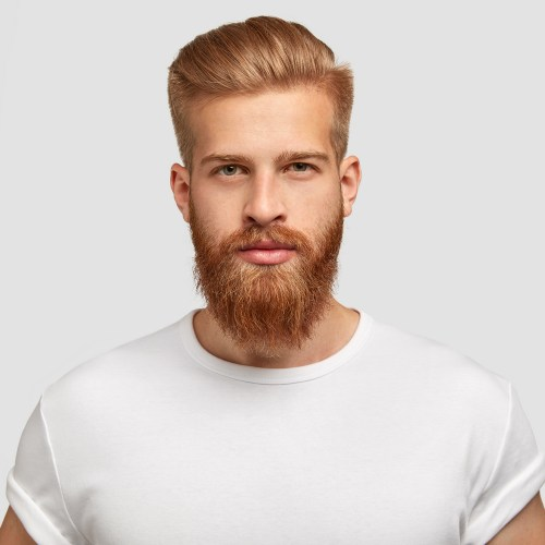 Men's Hairstyle with a Long Beard