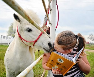 1st grade student reading a book and kissing mini white horse on the nose