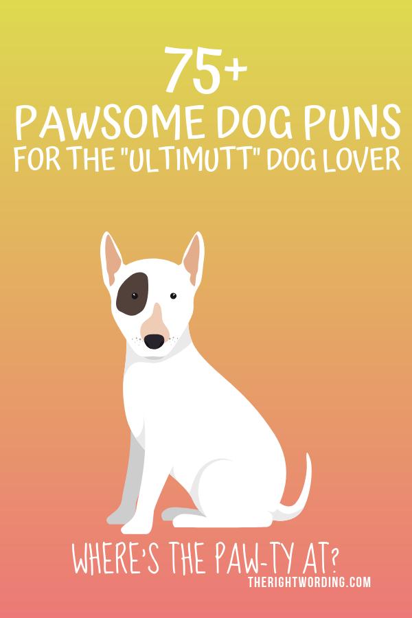 Dog Puns - Punpedia