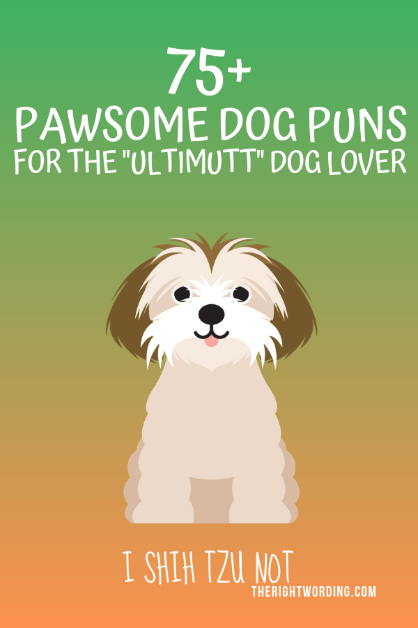 Pet Play On Words : words, Pawsome,