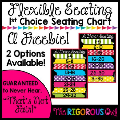 Flexible Seating First Choice Seating Poster Back to School FREEBIE!