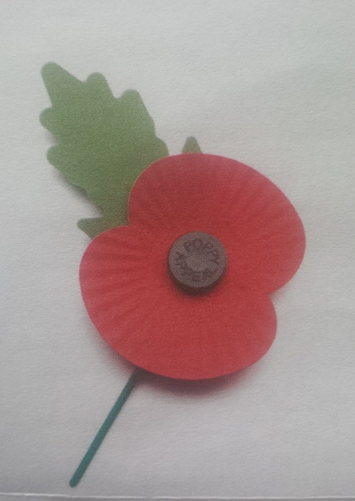 Remembrance day (Poppy Day) (1/3)