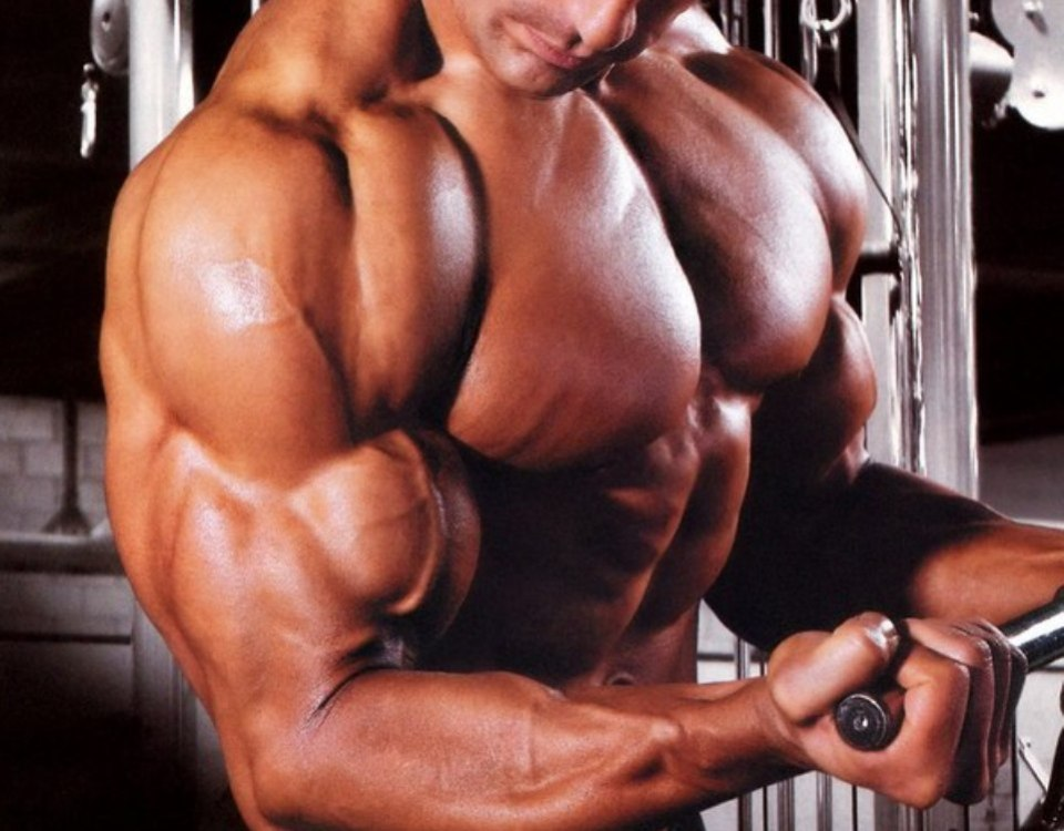 Want Big Arms? Hit Your Triceps More Often   TheRippedAthlete.com