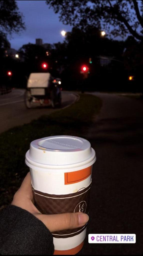fear, fearlessness, nyc, new york, park, evening, central park, coffee