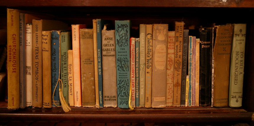 Vintage first-edition books on an old bookshelf tumblr. Yellowed pages, old paper smell and classic stories.