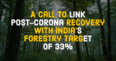 Link Post-Corona Recovery with Forestry