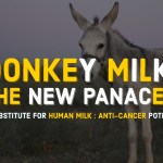 Donkey milk for human health