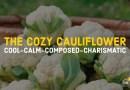 THE COZY CAULIFLOWER