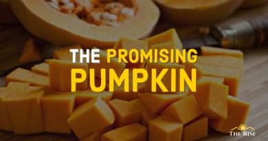 The Promising Pumpkin