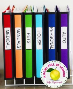 Keep track of life's details with binders