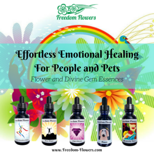 emotionalhealing freedom life blessing abundance flowers essences