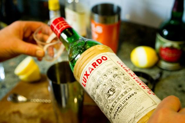 Allen Cocktail - Luxardo