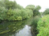The Stunning River Ouse