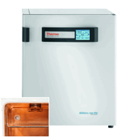 Thermo Heracell VIOS CO2 Incubator 51030963