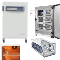 Thermo Heracell VIOS CO2 Incubator 51032128