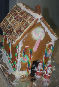 Confessions of a Gingerbread House Thermovixens