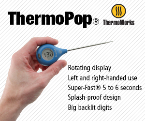 ThermoWorks ThermoPop