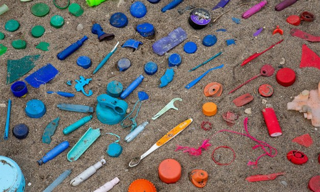 Reducing Reliance on Harmful Plastics Using Thermal Conductivity and Cellulose