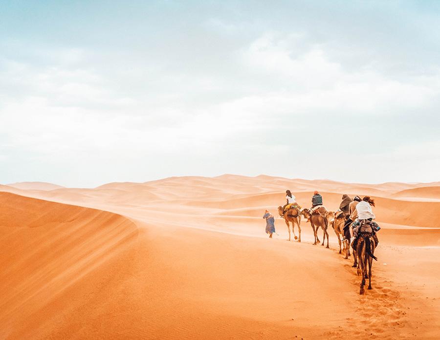 Катание на верблюдах в пустыне Мерзуга Что посмотреть в Марокко?