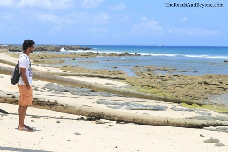 North Bay beach image