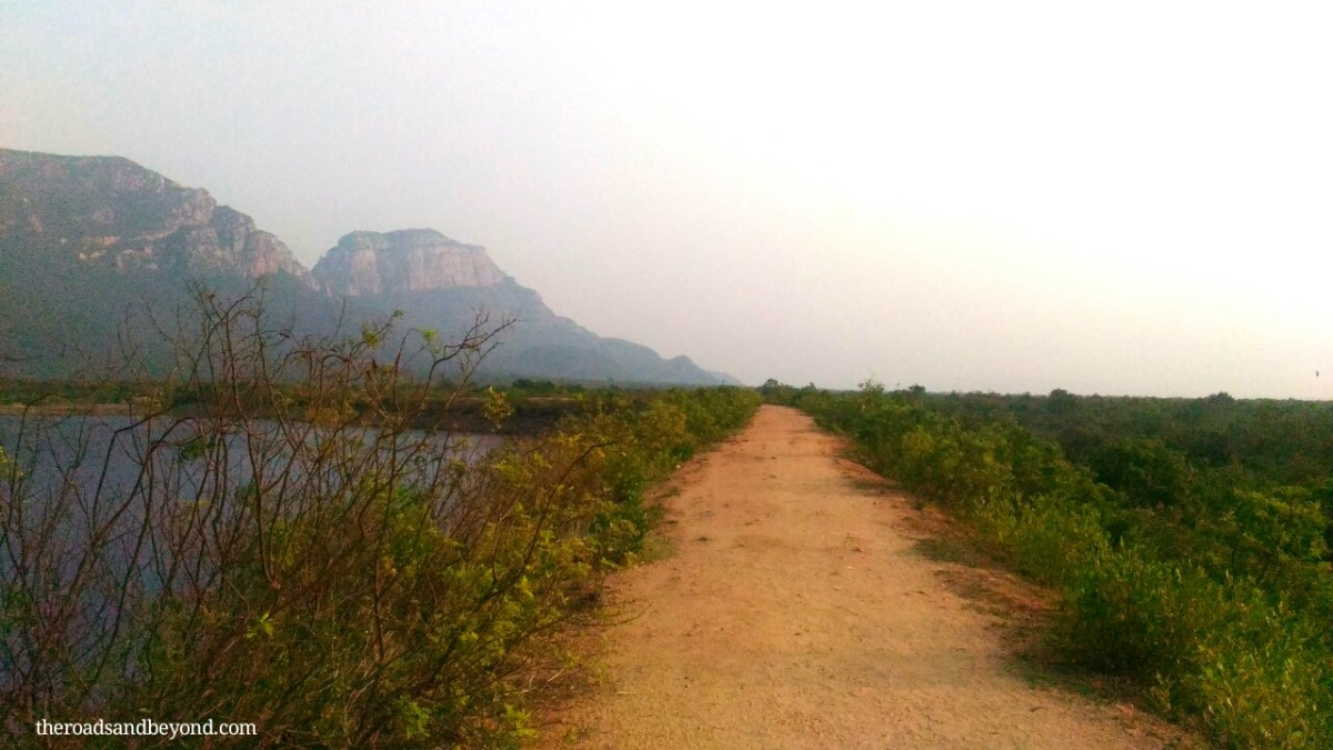 A guide to Nagalapuram falls trek