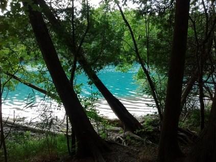 green_lakes_falling_trees
