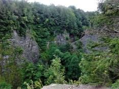 trees_gorge_whetstone