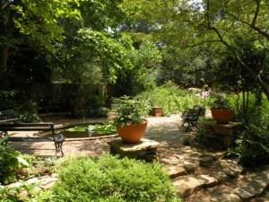 Lawrence pond pots