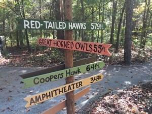 Bird roads sign