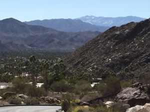 Palm Springs view Hillers