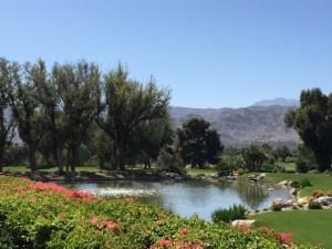 Sunnylands pond