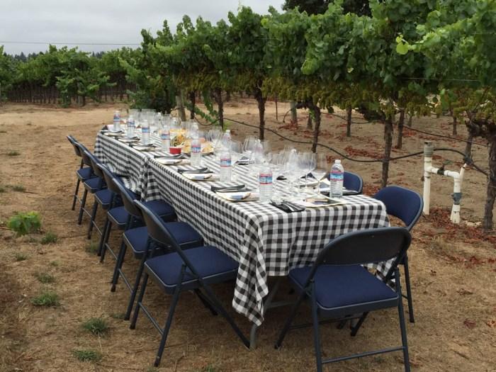 Dutton-Goldfield brunch in the vineyard