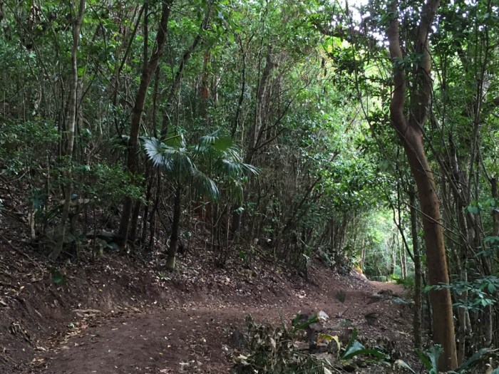 Start of Reef Bay hike